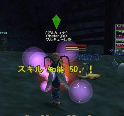 moe 知能50.0