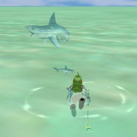 moe サメ